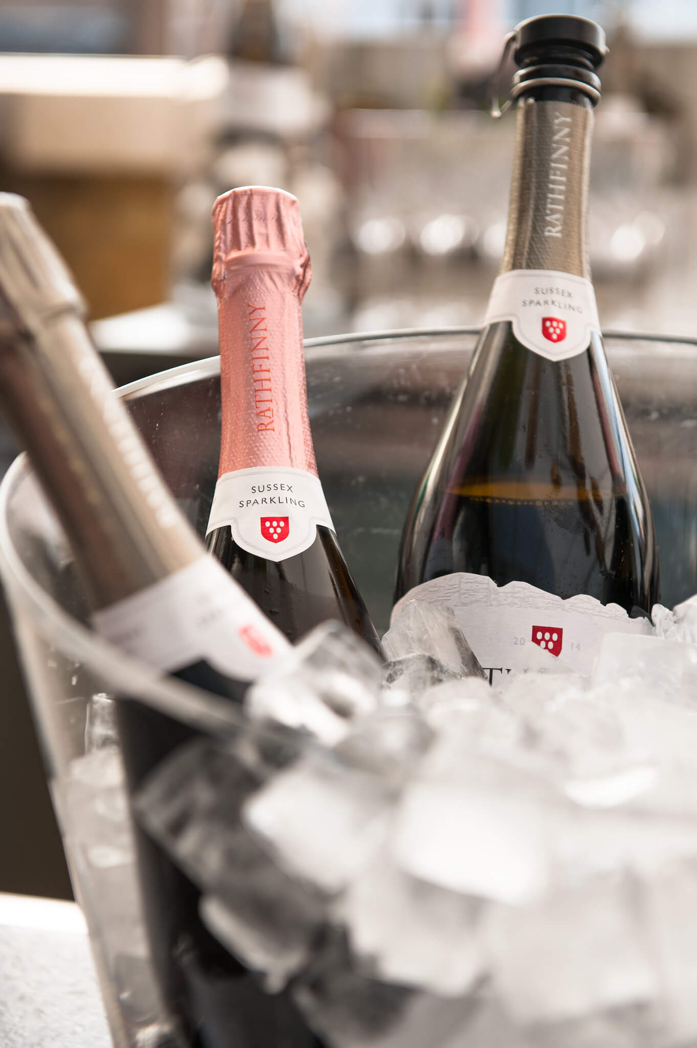 Rose and Blanc de Blancs in Ice Bucket