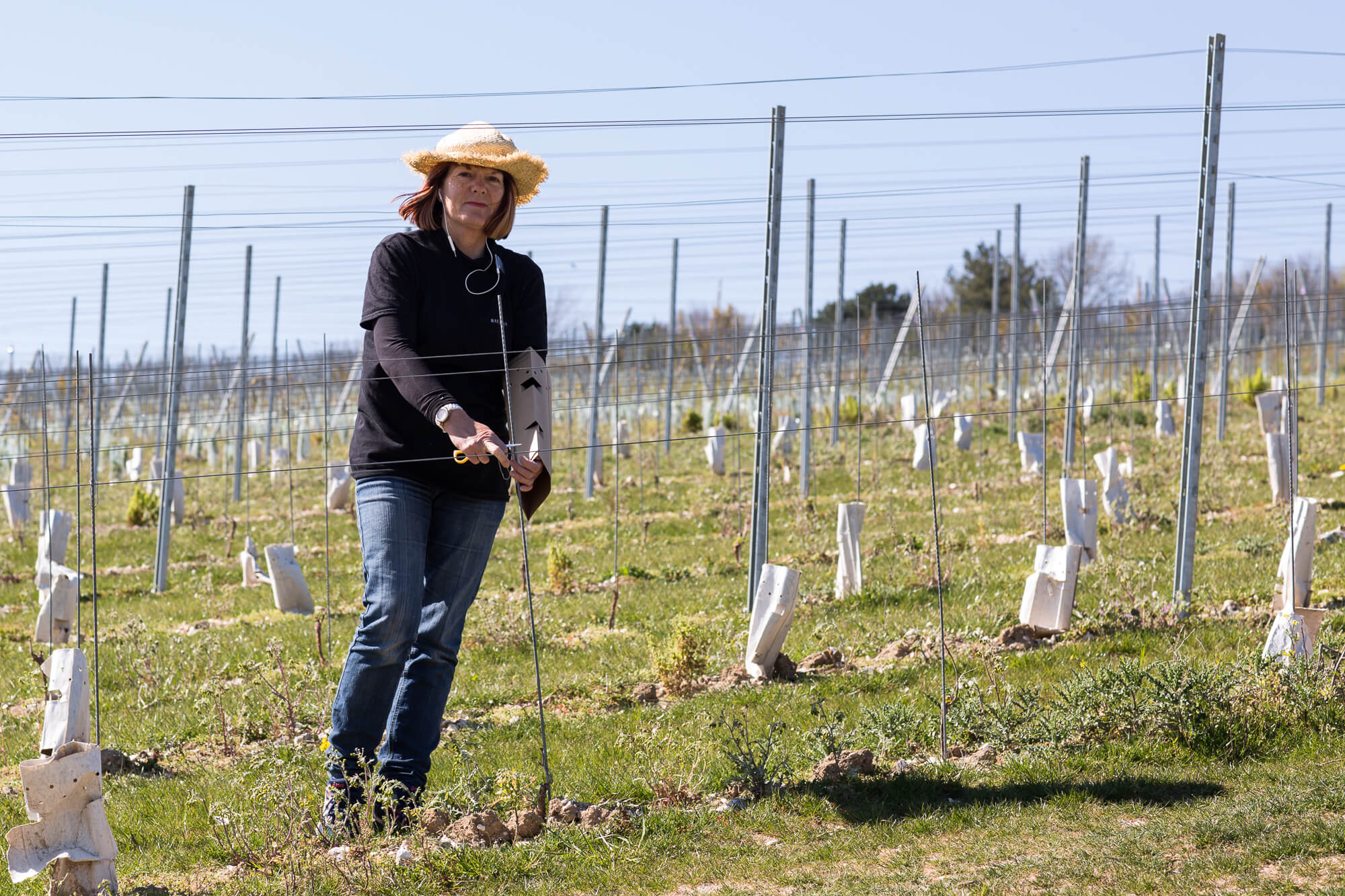 Judith Working on New Plantings