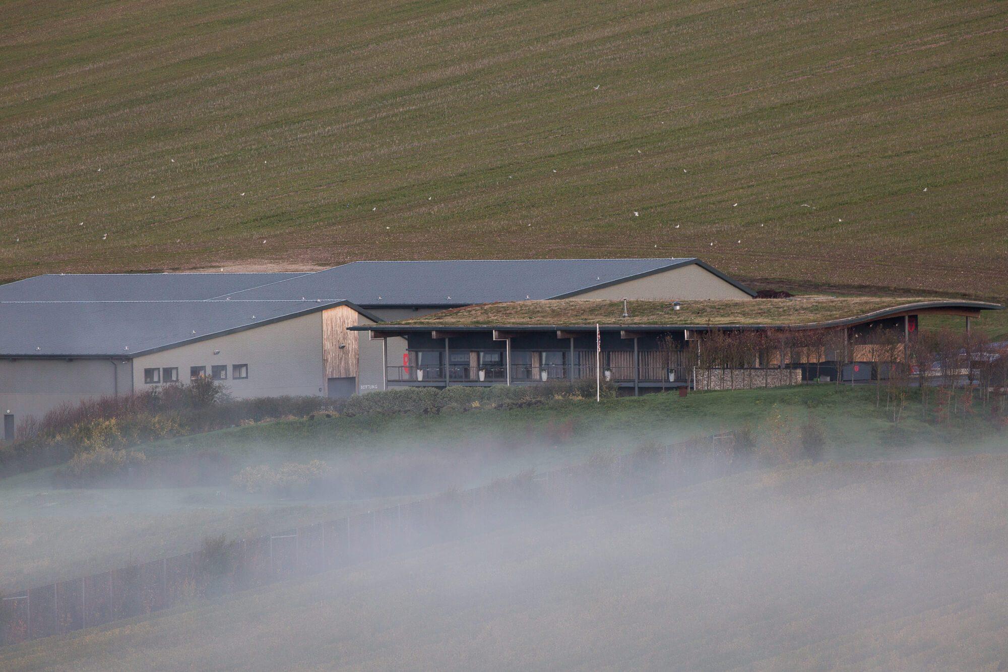 Mist Over the Tasting Room