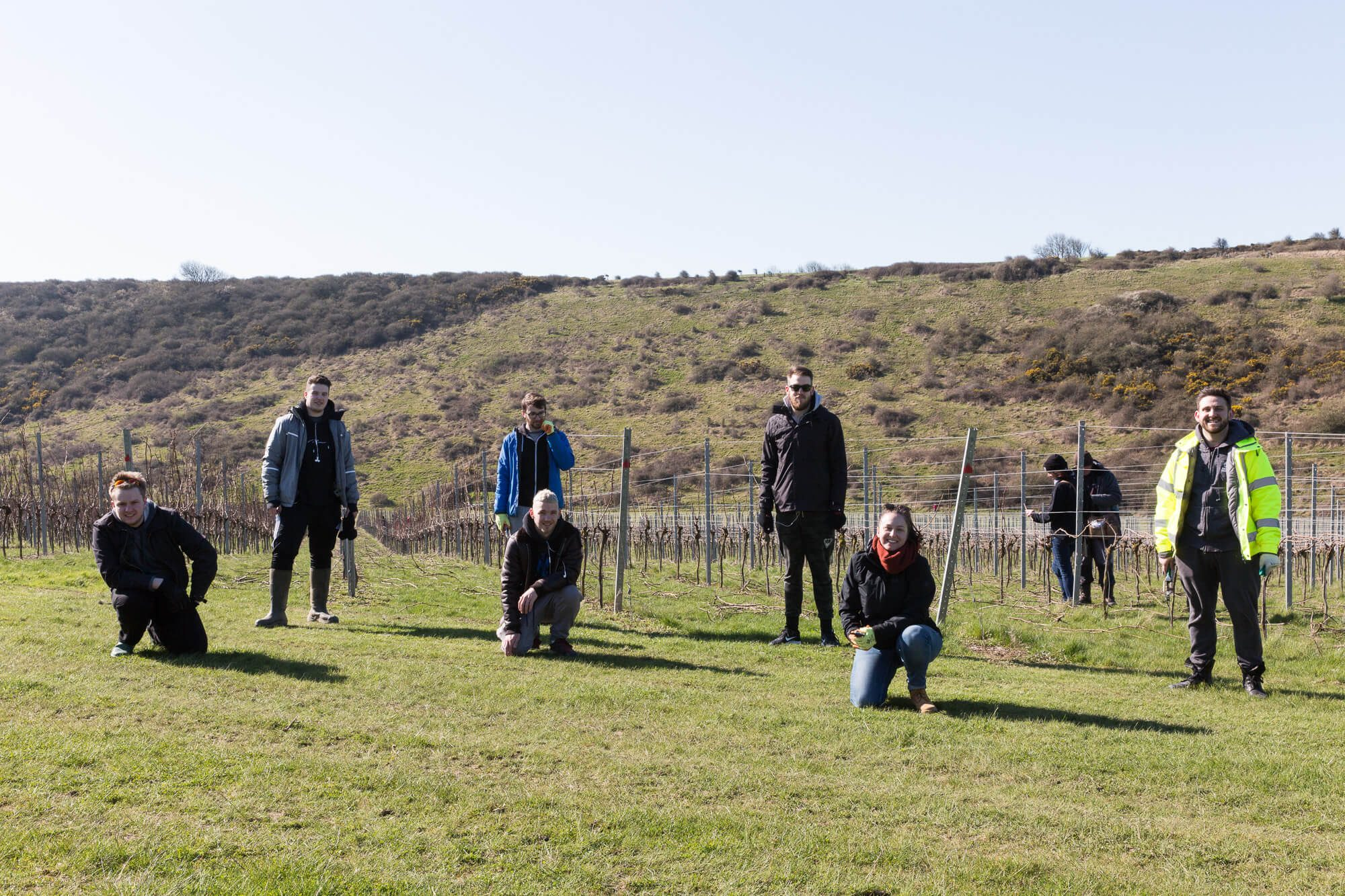 Rathfinny Tasting Room Team Pruning