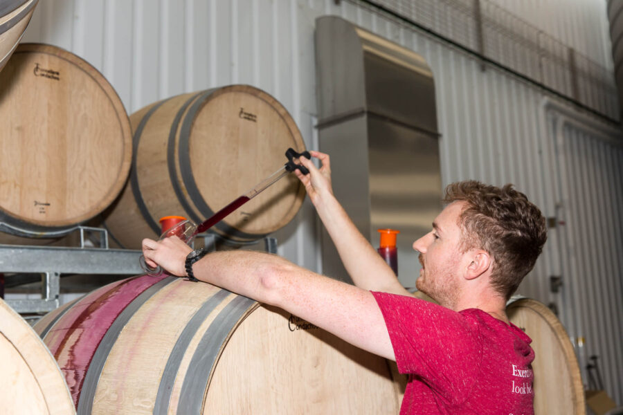 Working in a winery