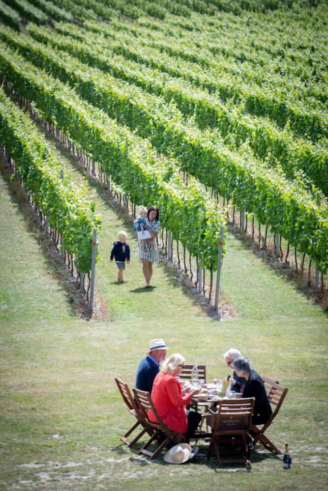 Vineyard Picnics