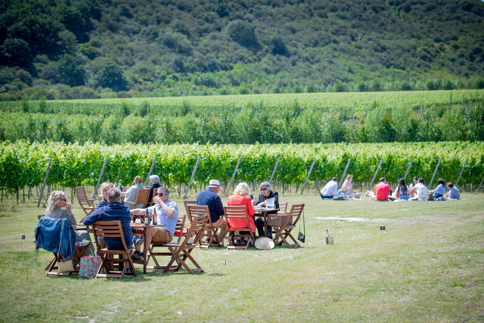 Rathfinny Vineyard Picnics
