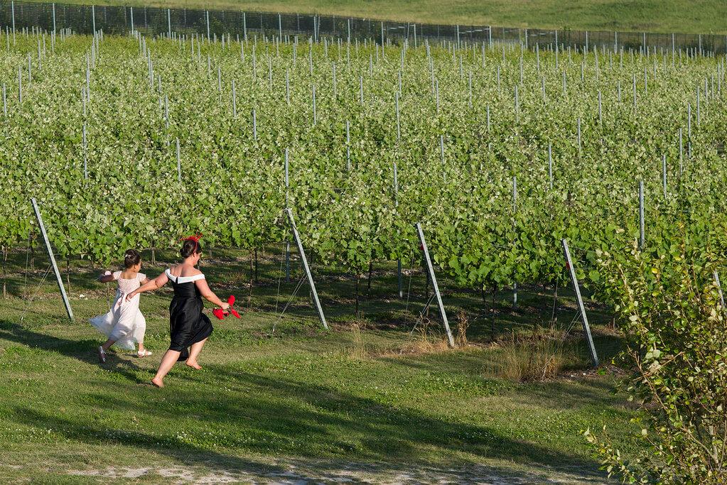 Running through the Vines