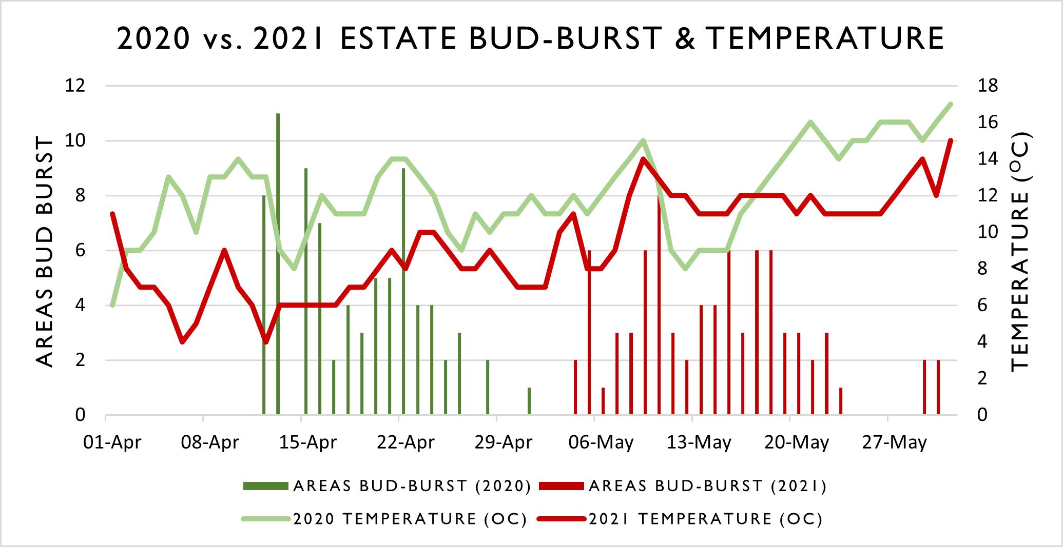 Bud Burst and Temperature Graph